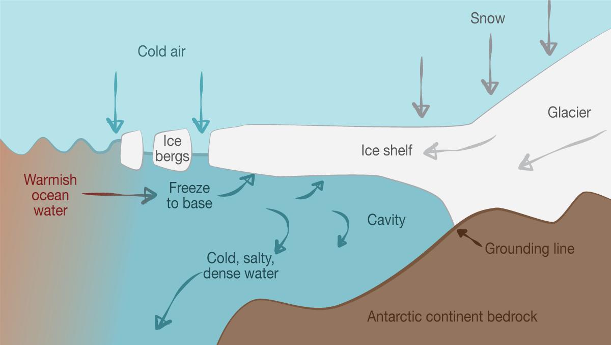 Bottoms Up  Melting The Dark Side Of Antarctic Ice Shelves