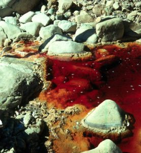 Acid mine drainage can have severe effects on the health of our waterways.